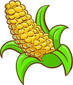 Corn cob Clip Art and Illustration. 1,029 corn cob clipart vector.