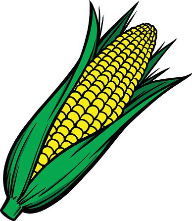 Corn on the cob clip art.