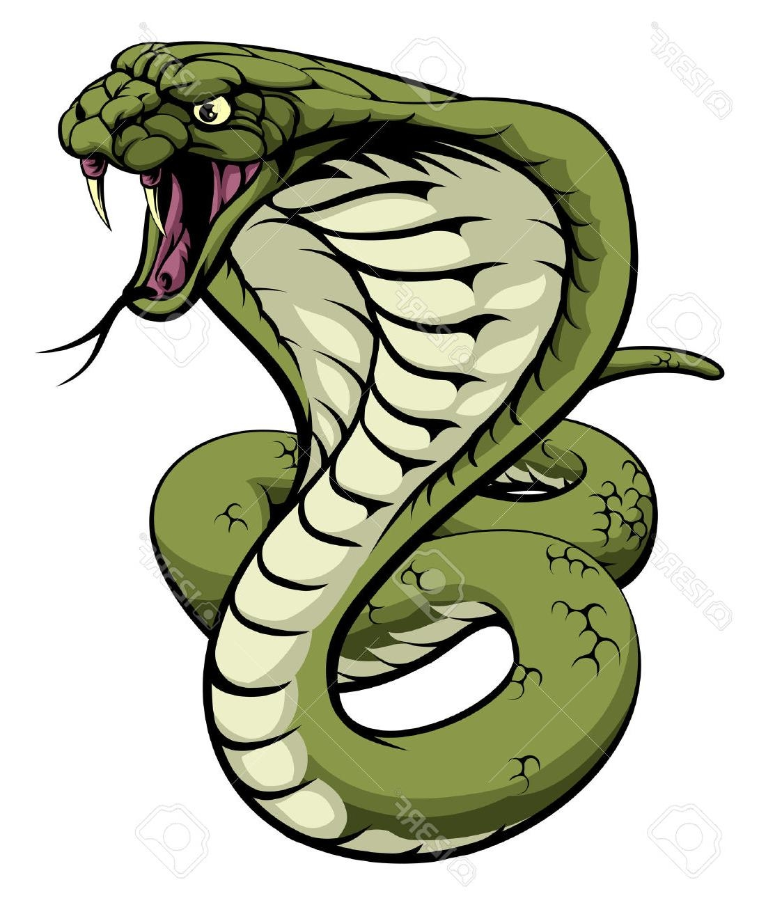 The best free Cobra clipart images. Download from 117 free.