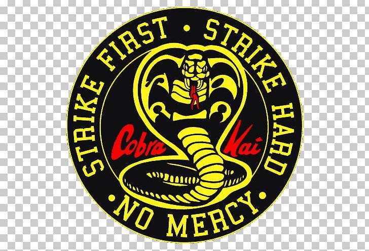 The Karate Kid Johnny Lawrence Daniel Larusso Television Show Cobra.
