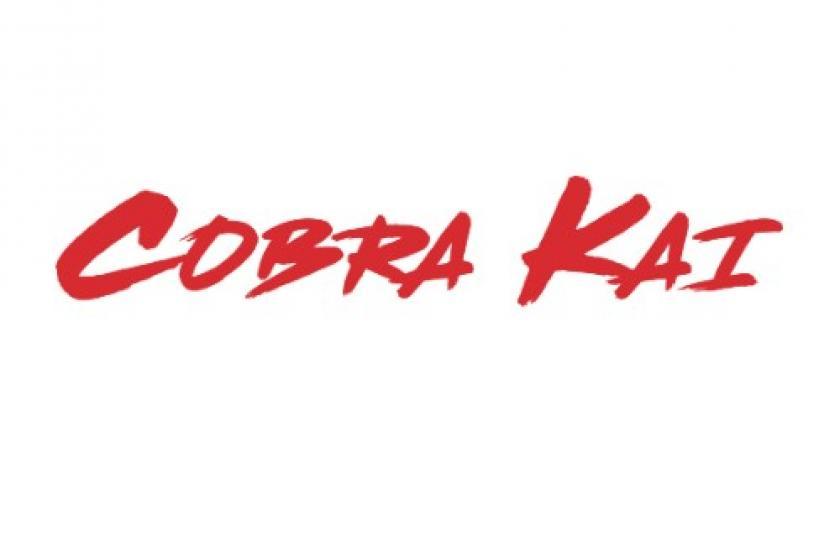 Sony Kicks Off 'Cobra Kai' Deals.