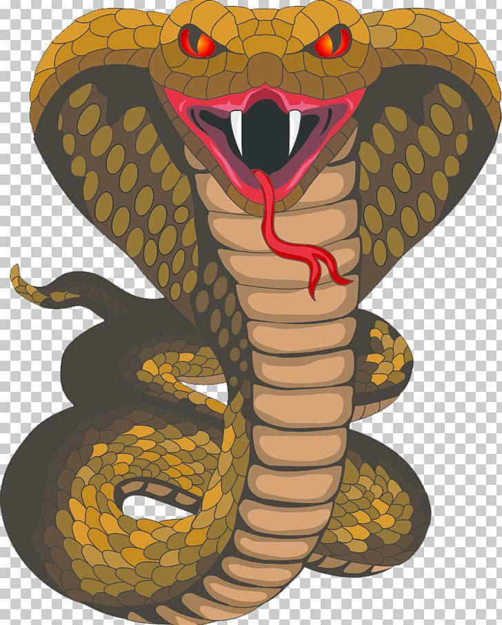 King Cobra Snake PNG, Clipart, Art, Clip Art, Cobra, Cobra Mascot.