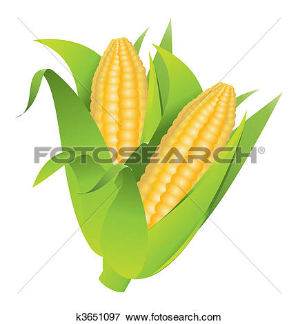 Maize clipart #10