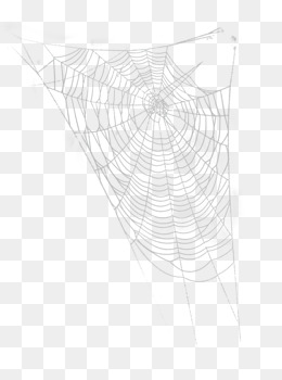 Cobweb Png, Vector, PSD, and Clipart With Transparent Background for.