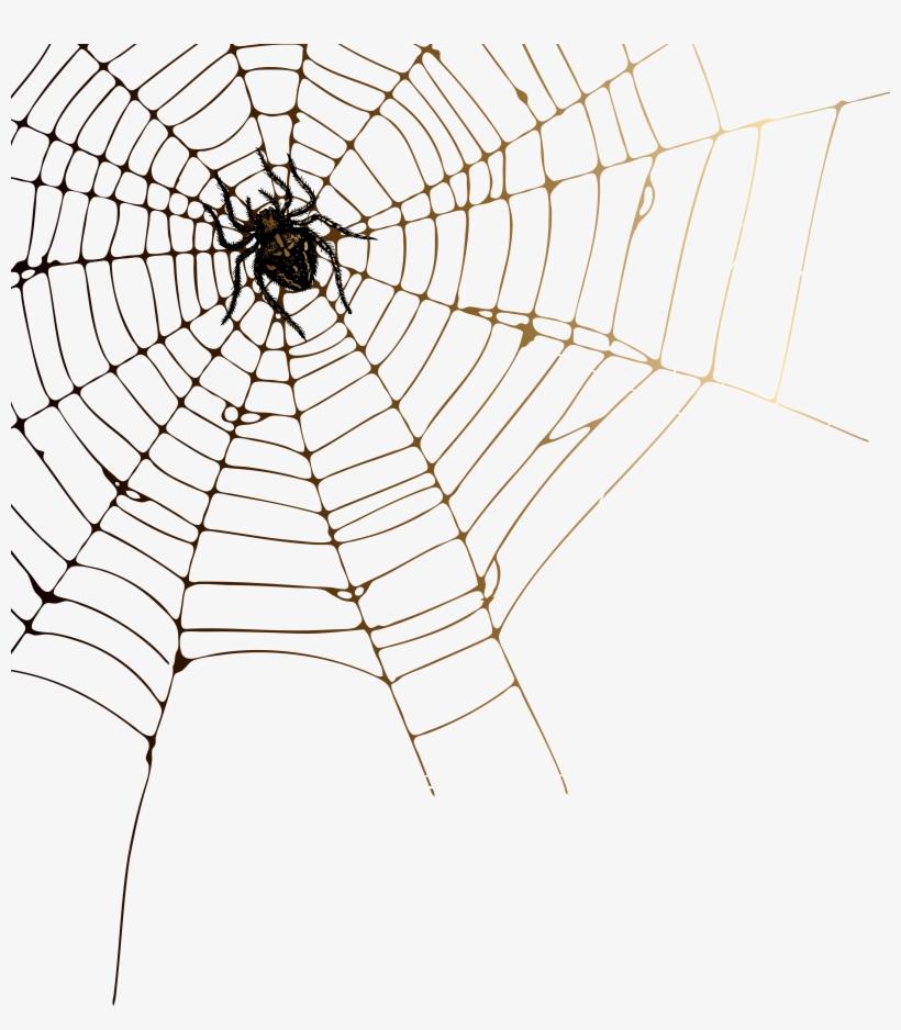 Cobweb Png.