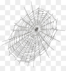 Cobweb Png (110+ images in Collection) Page 2.