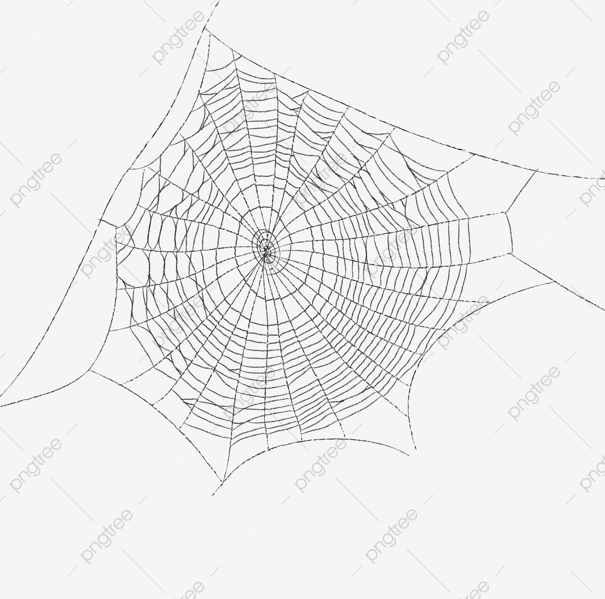 Cobweb, Spider Web Material, Network, Black Spider Web PNG.