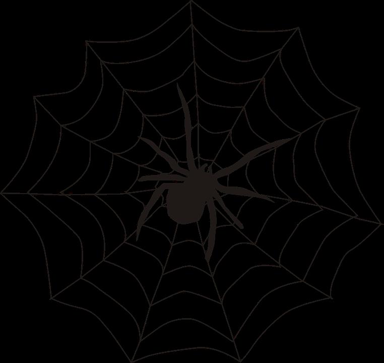 Spider Spider'S Web Spiderweb.