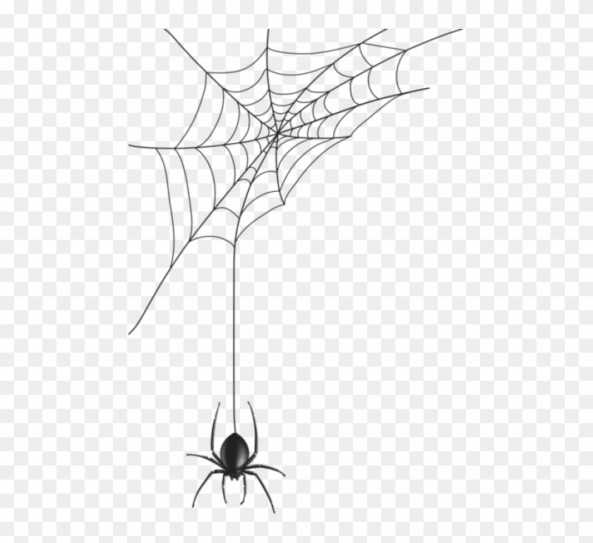 Free Png Download Spider Web Png Images Background.