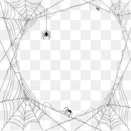 Spiders And Cobwebs Vector Design Materi #51877.