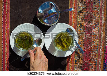 "Stock Images of Coca leaves tea known as ""Mate de Coca"" k30324376."