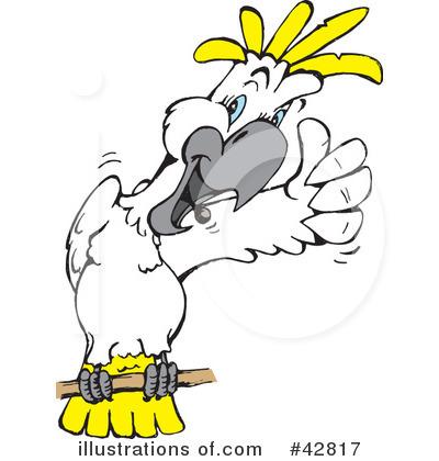Cockatoo Clipart #42817.
