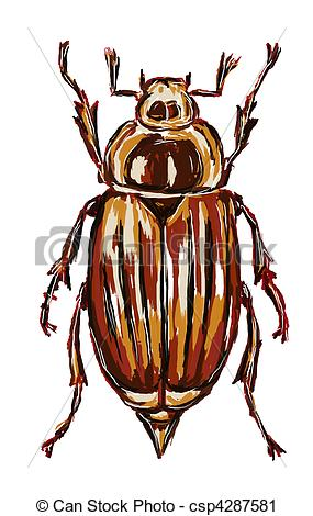 Clipart of cockchafer.