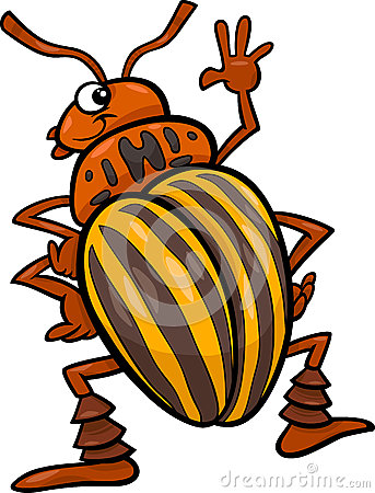 Beetle Insect Cartoon Illustration Royalty Free Stock Image.