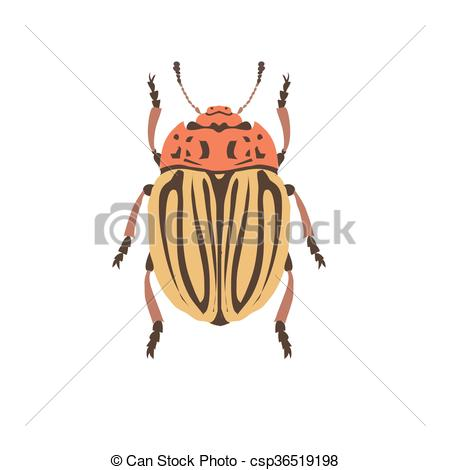 EPS Vectors of Cockchafer vector silhouette. Chafer on white.