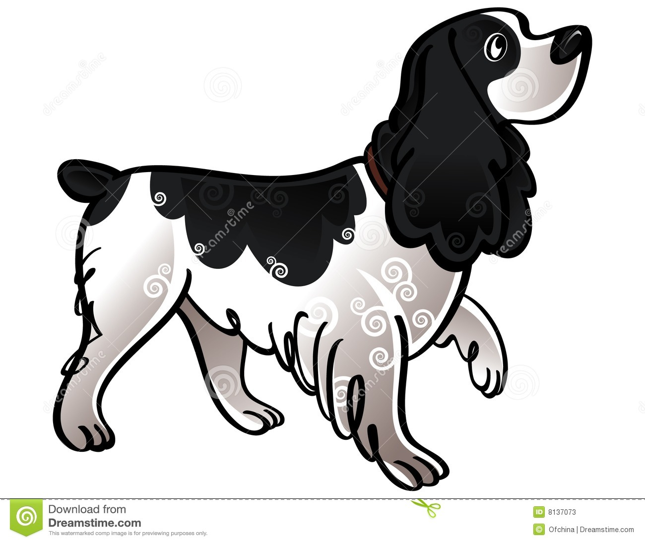 Spaniel Stock Illustrations.