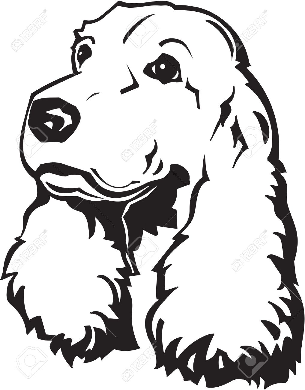 Cocker spaniel head clipart.