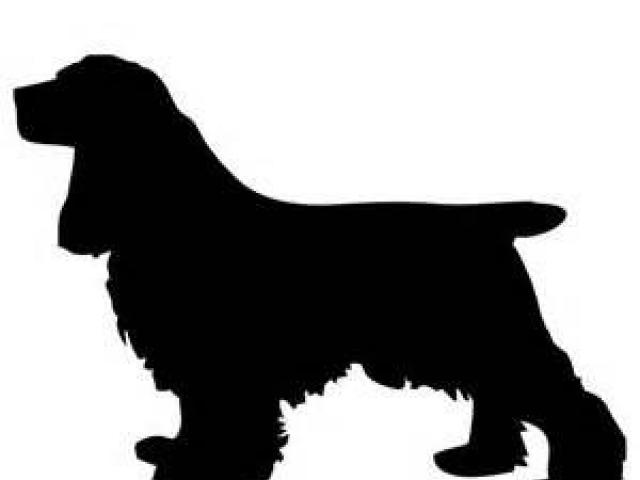 Free Cocker Spaniel Clipart, Download Free Clip Art on Owips.com.