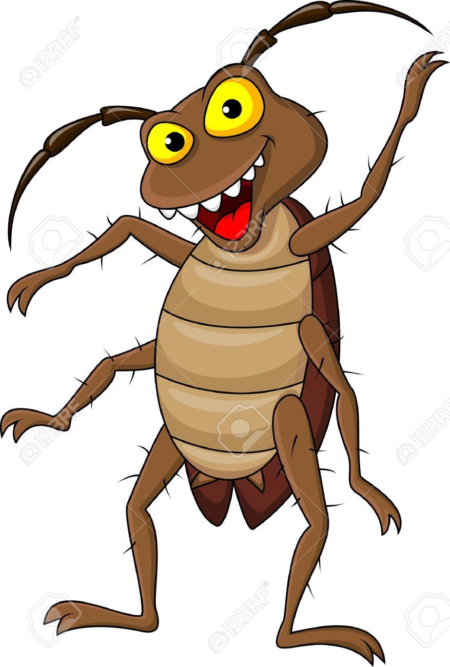 Animated cockroach clipart.