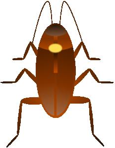 Cockroach Clip Art Download.