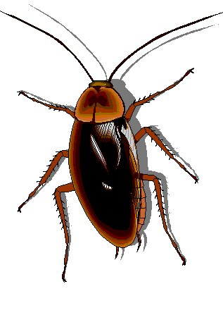 Cockroach Clipart Page 1.
