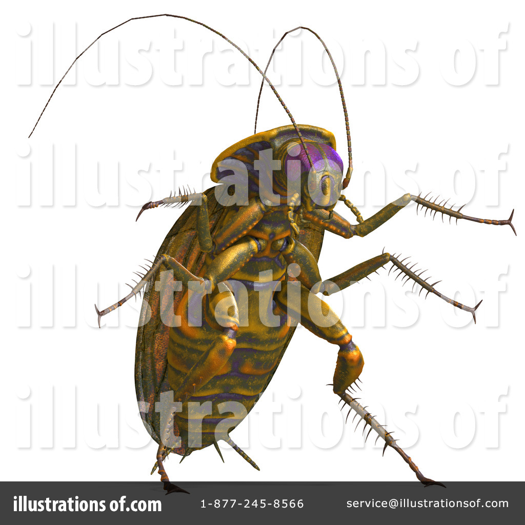 Cockroach Clipart #1073881.