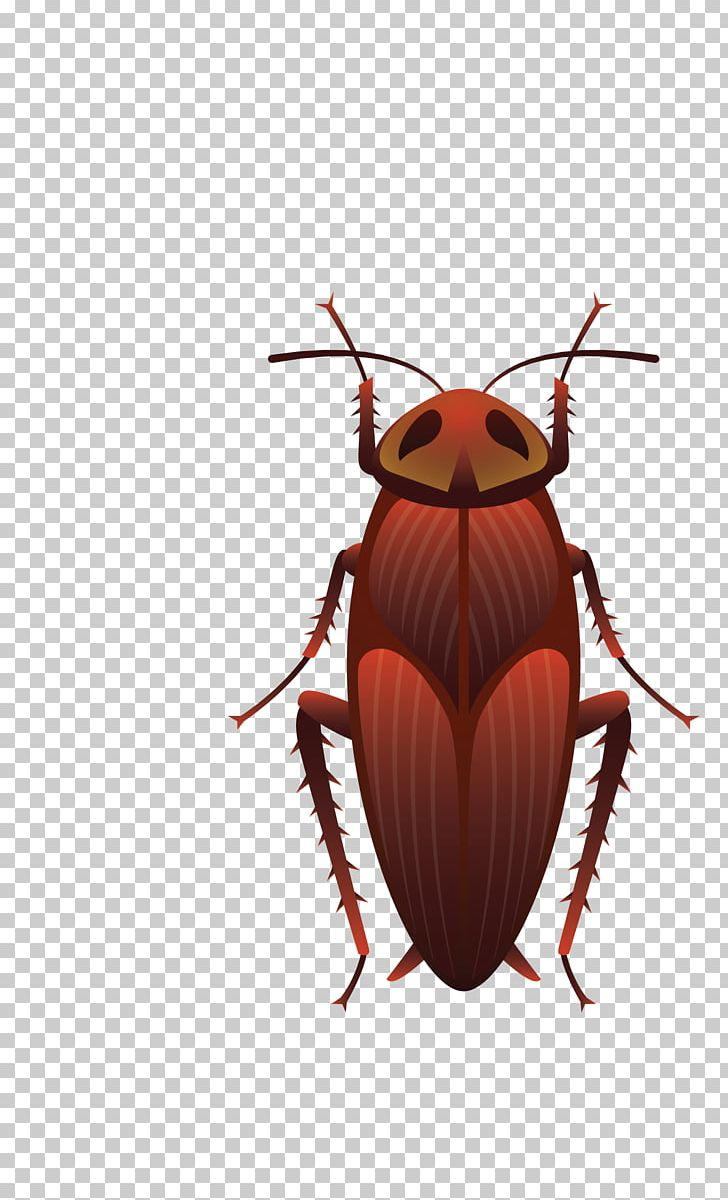 Insect Wing Cockroach Bee Butterfly PNG, Clipart, Animals, Ant.