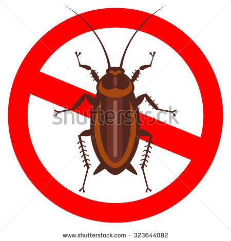 Cockroach Cartoon Stock Photos, Royalty.