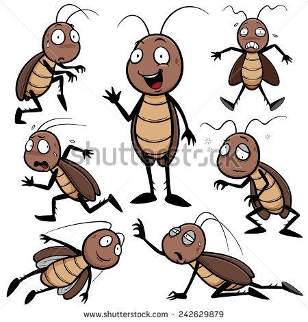 Cockroach Stock Photos, Royalty.