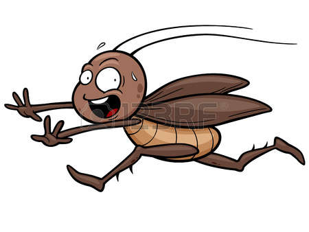 Cockroach Stock Photos & Pictures. Royalty Free Cockroach Images.