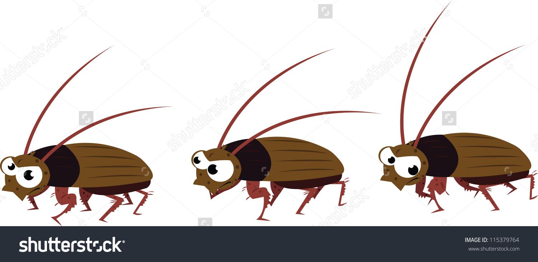 Vector Cartoon Representing Funny Cockroach Different Stock Vector.