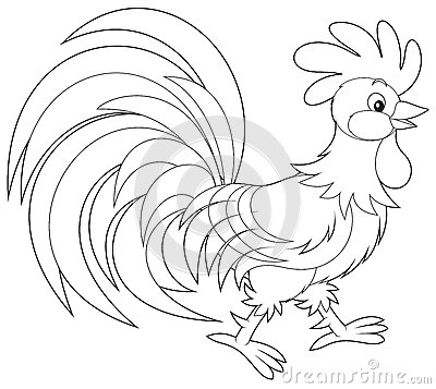 Cock Doodle Doo Stock Illustrations.