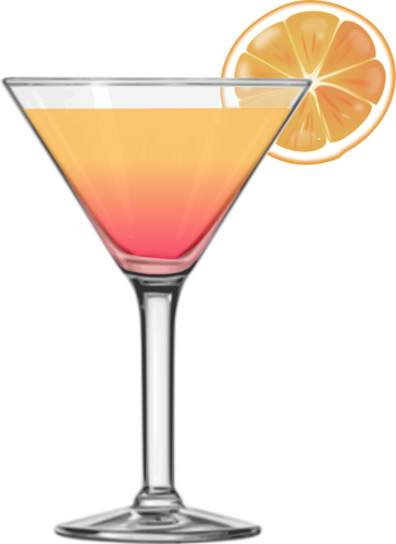 Tequila sunrise cocktail vector image.
