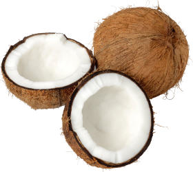 Free transparent Coco PNG images Download.