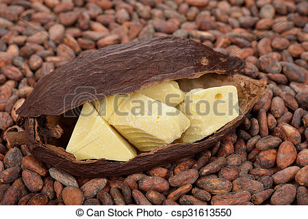 Stock Images of Natural cocoa butter and cocoa beans csp31613550.