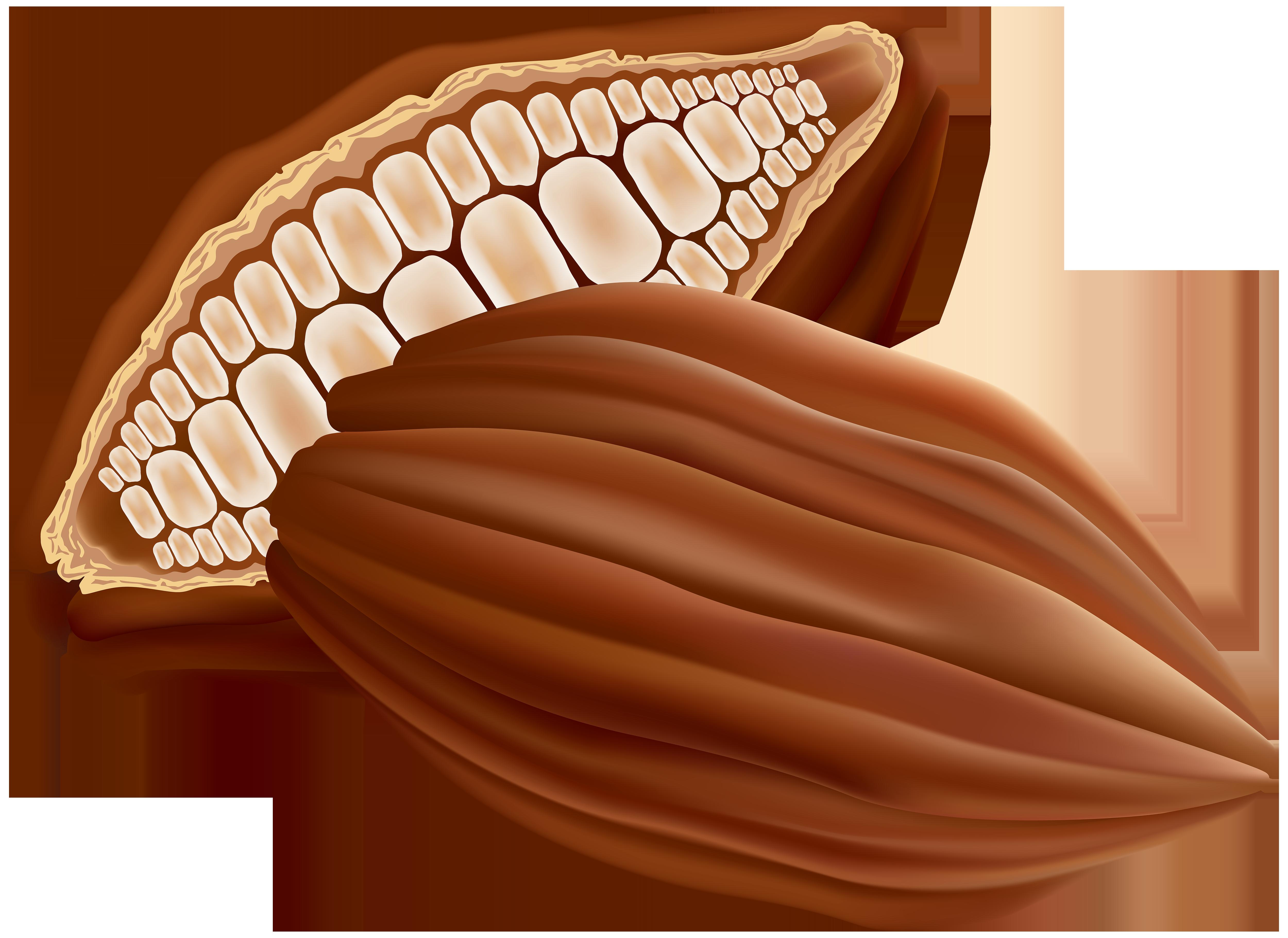 Cocoa PNG Clip Art Image.