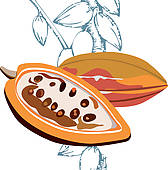 Cocoa Fruit Clip Art.