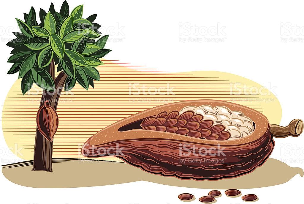 Cocoa Bean Clip Art, Vector Images & Illustrations.