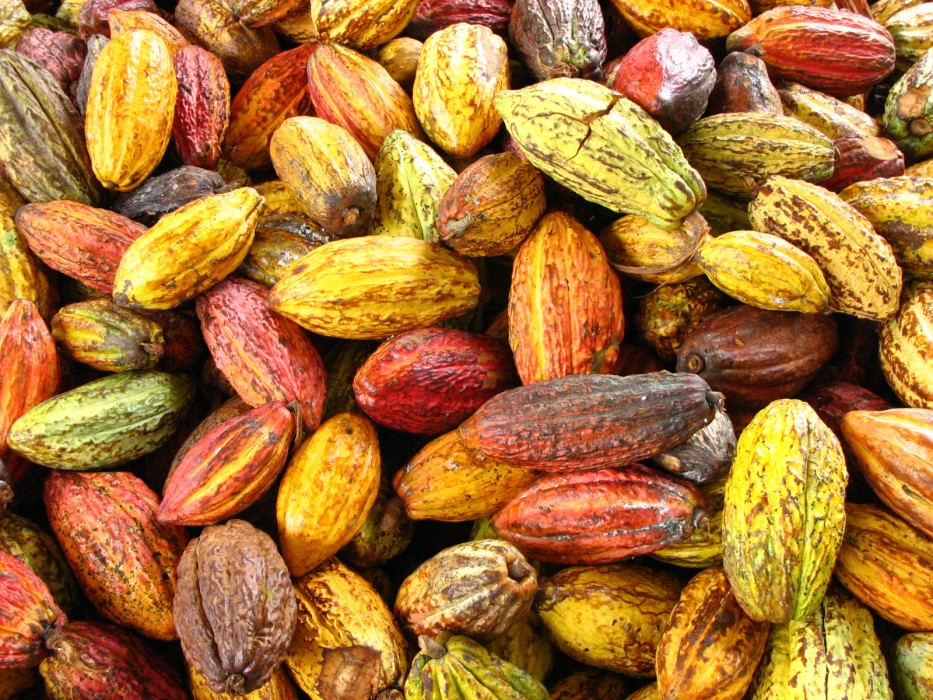 Cocoa Production in Nigeria: A Literature Review.