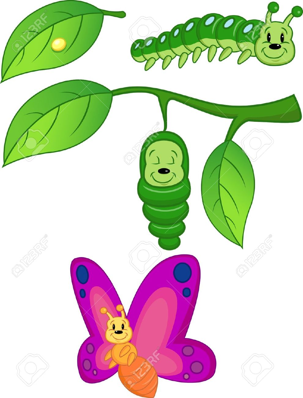 Cocoon butterfly stock image clipart free.