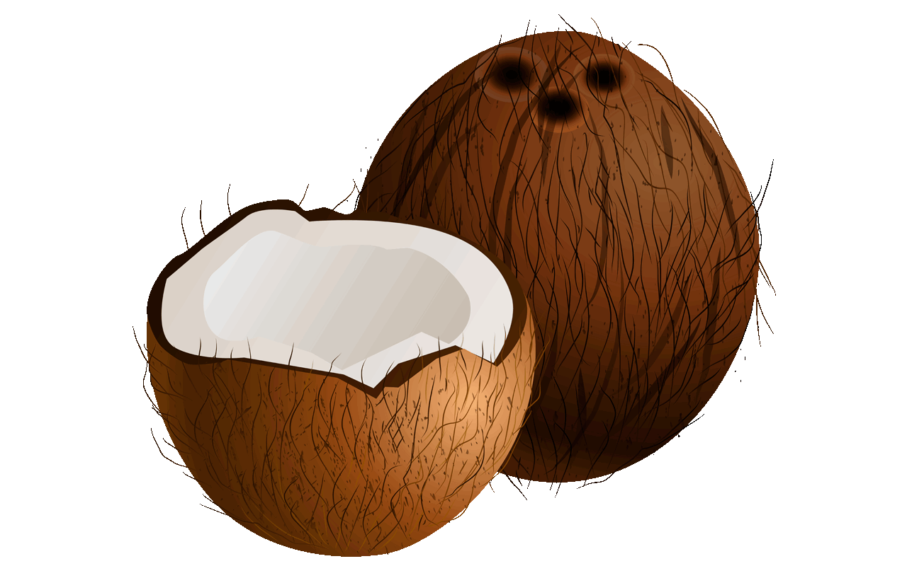 Orange Coconut Clipart Clipground