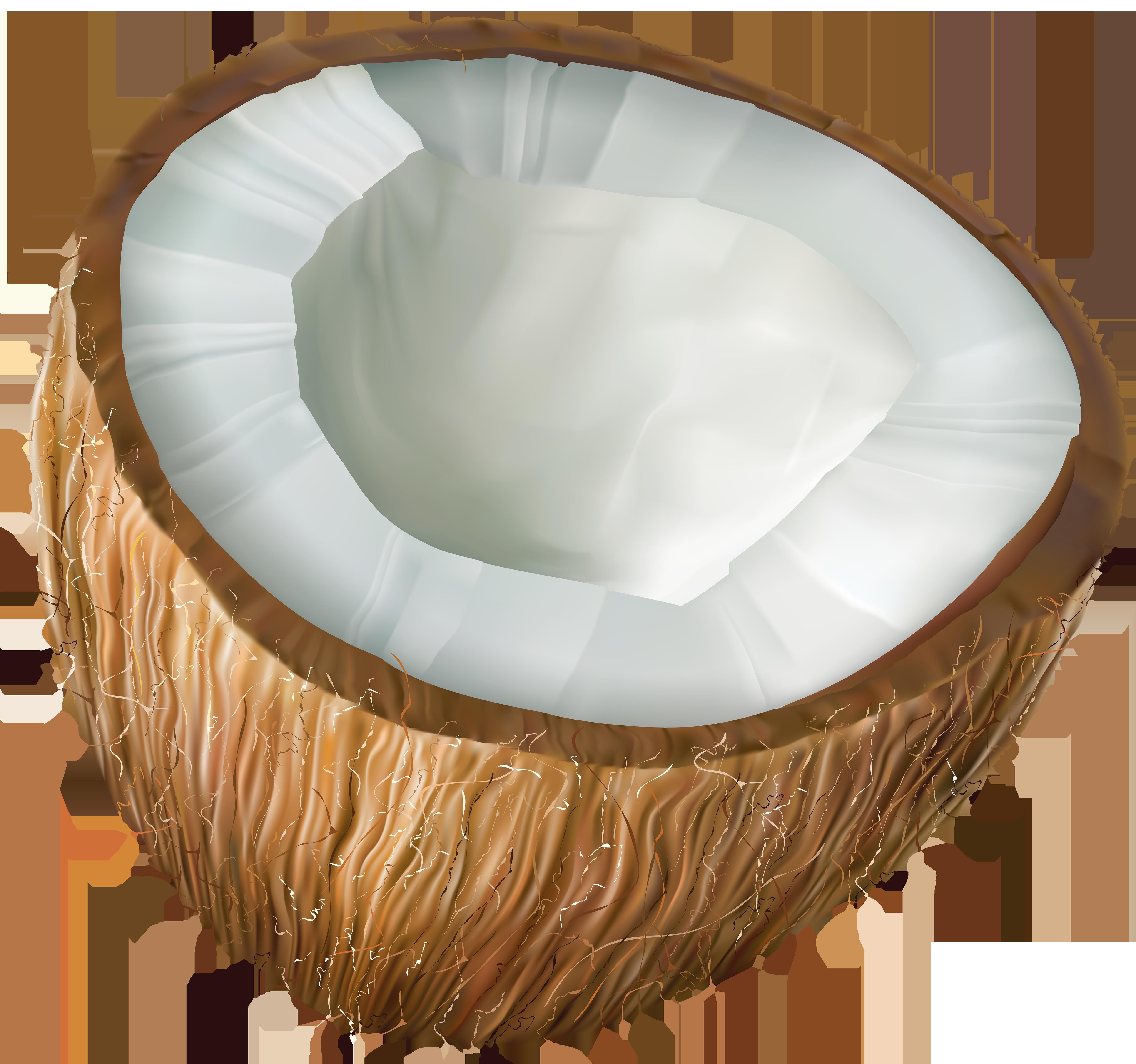 Coconut Transparent PNG Clip Art.