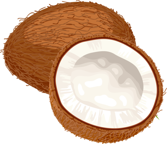Coconut Clipart Images.
