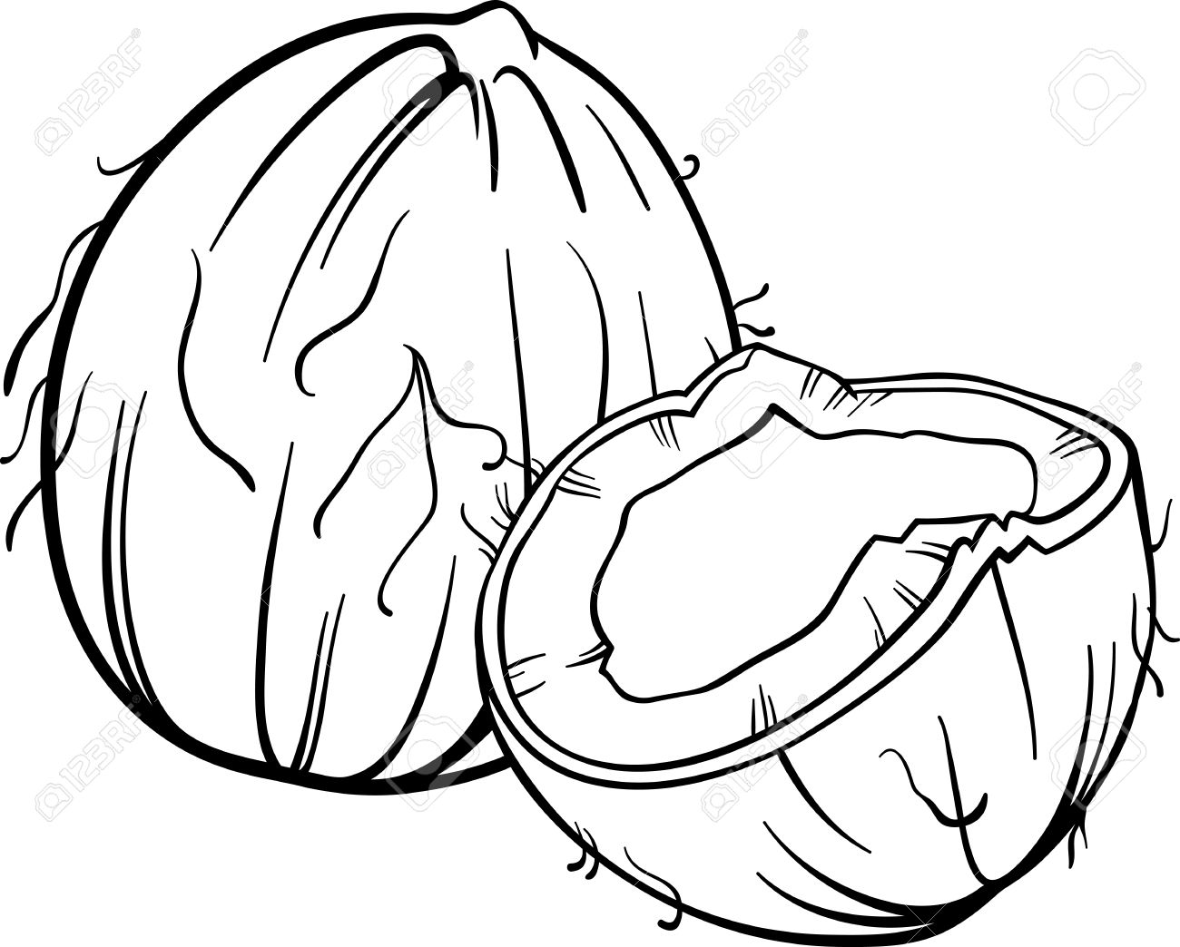 Black and White Cartoon Illustration of Coconut or Cocoanut Food...
