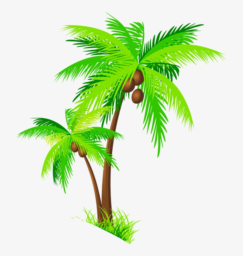 Coconut Tree Clipart Group.