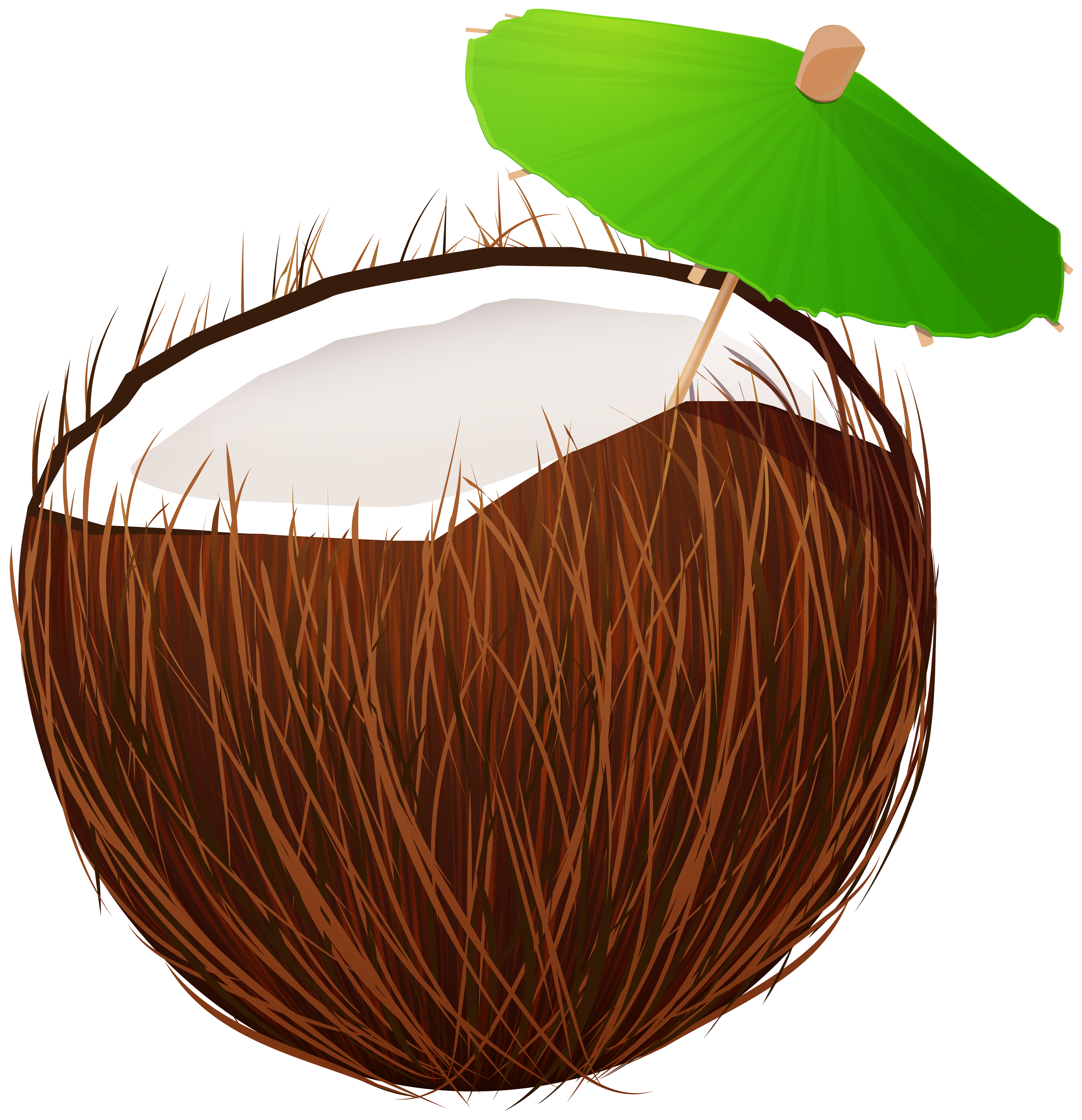 Coconut Drink PNG Clipart.