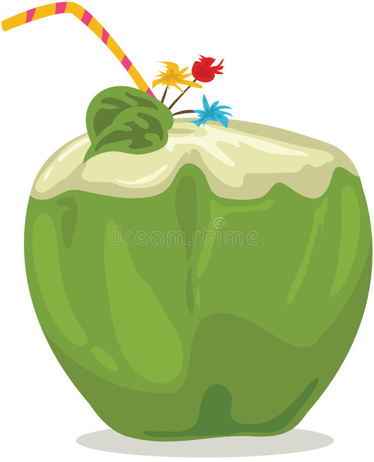 Coconut Water Stock Illustrations.