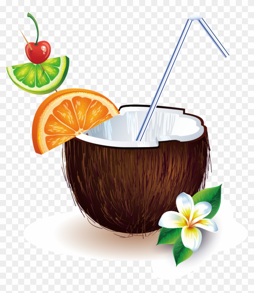 Coconut Drink Clipart (95+ images in Collection) Page 1.