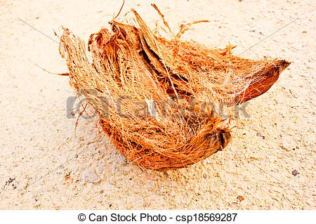 Pictures of coconut fiber coir on soil nature fertilizer.