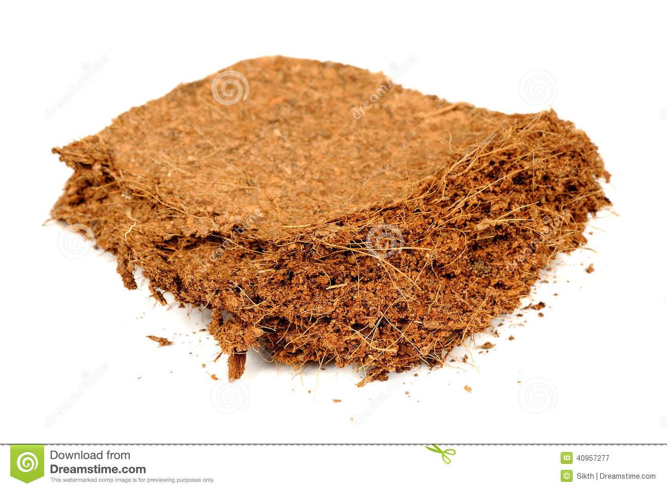 Coconut Coir Fibre Stock Image.